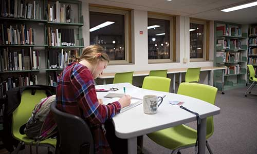 Student studying in the Learning Commons