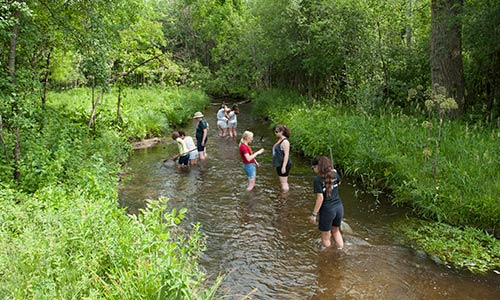 eight people conducting a science investigation in Genesse Creek