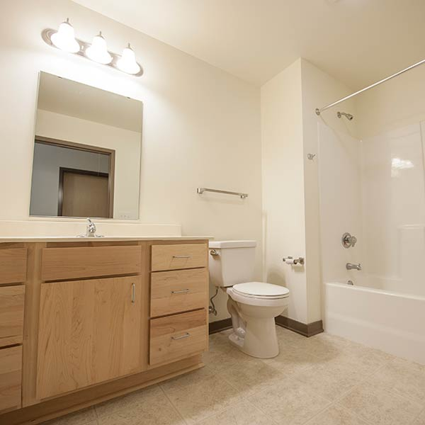 suite style bathroom